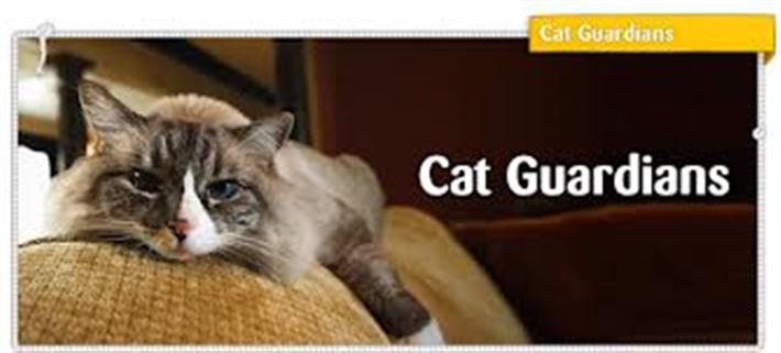 cat guardians