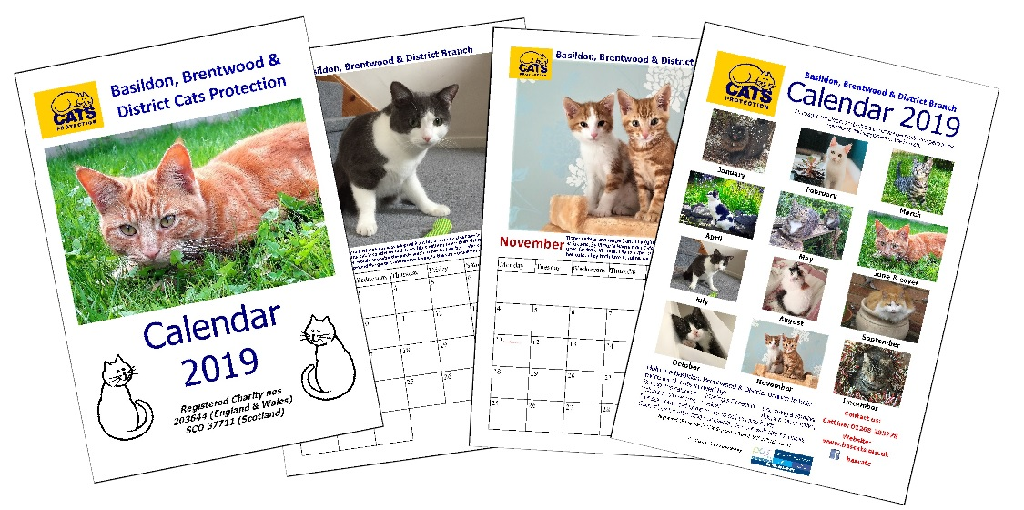 2021 Calendar Competition Now Closed