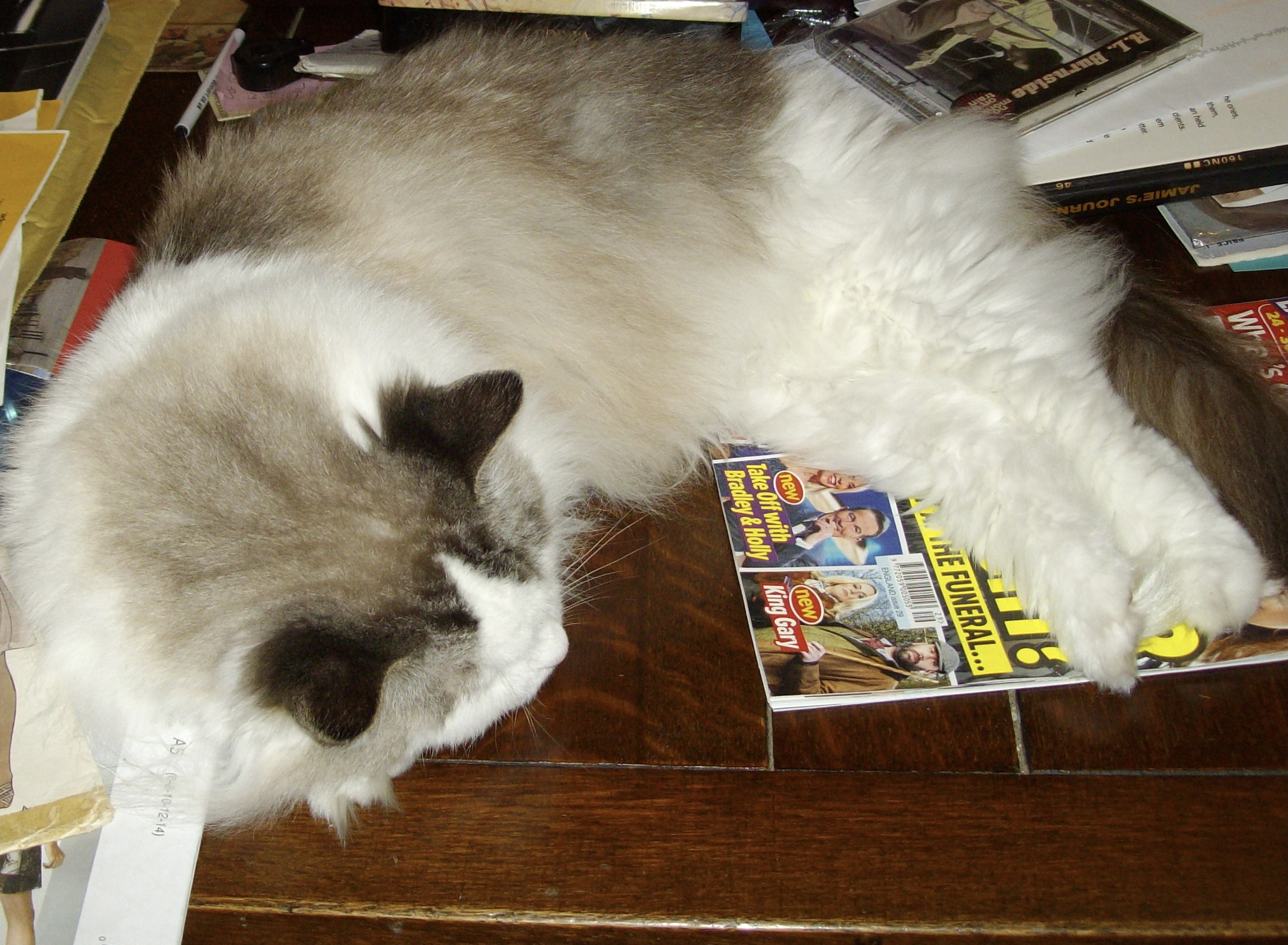 Pearl laid on some magazines