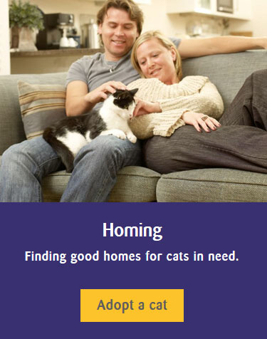 Adoption - homing link